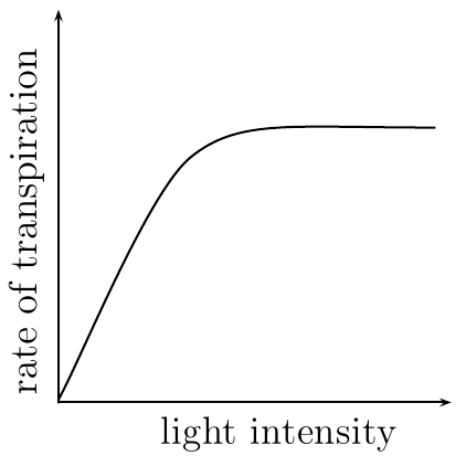 effect with lgt at transpiration