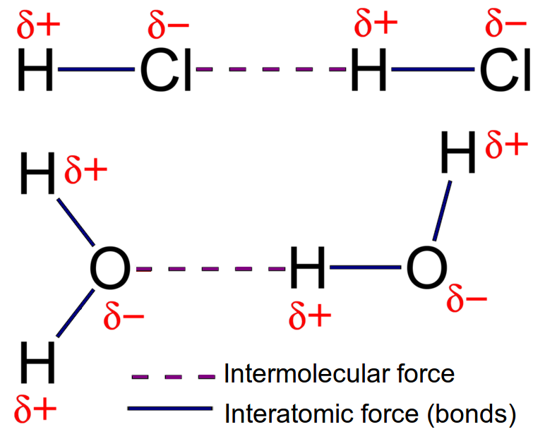 Intermolecular And Interatomic Forces | Intermolecular Forces | Siyavula